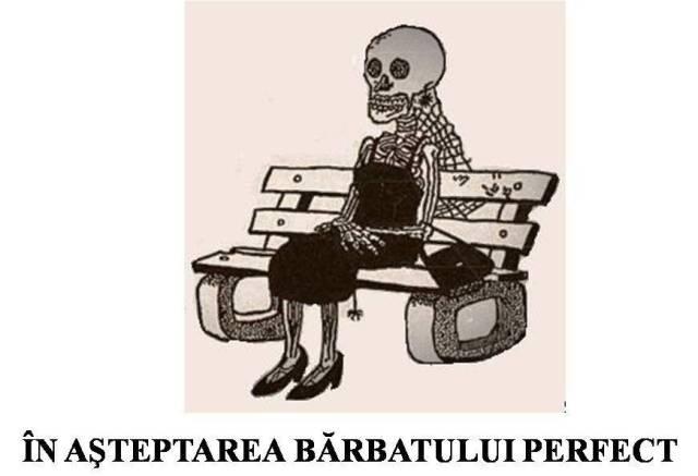 in asteptarea barbatului perfect