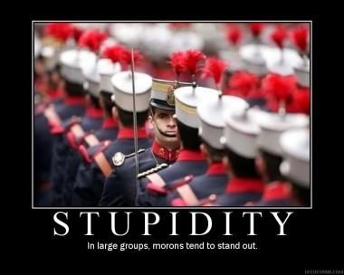 stupidity-poster