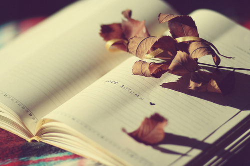 autumn-book-leaves-love-photograph-favim-com-62918